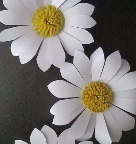 Daisies of paper with their own hands
