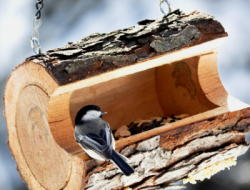 feeder from logs