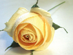 Paper rose hand made
