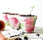 Декупаж цветочных горшков