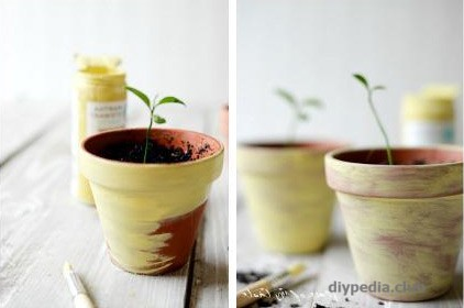 Flower Pots Decor