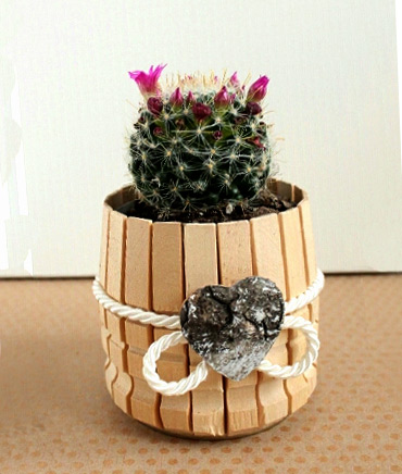 Flower pots made of improvised materials