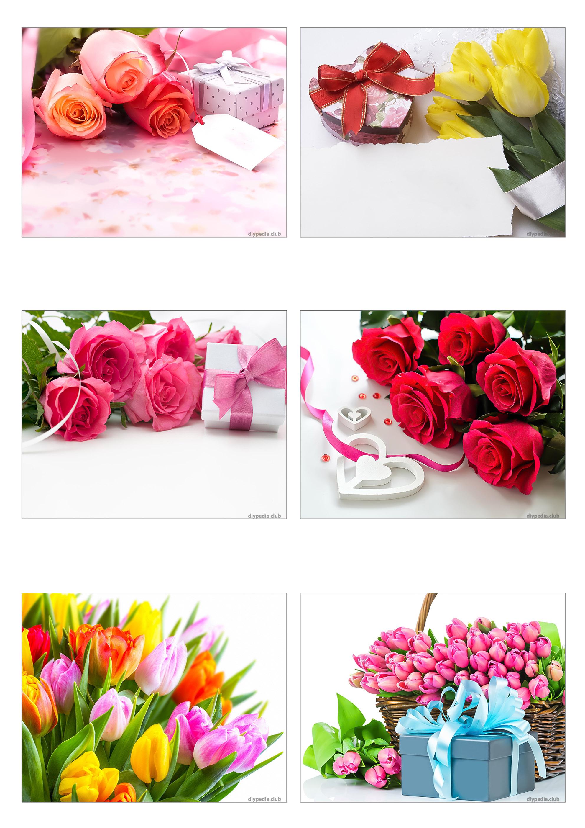 Красивые открытки с цветами бесплатно