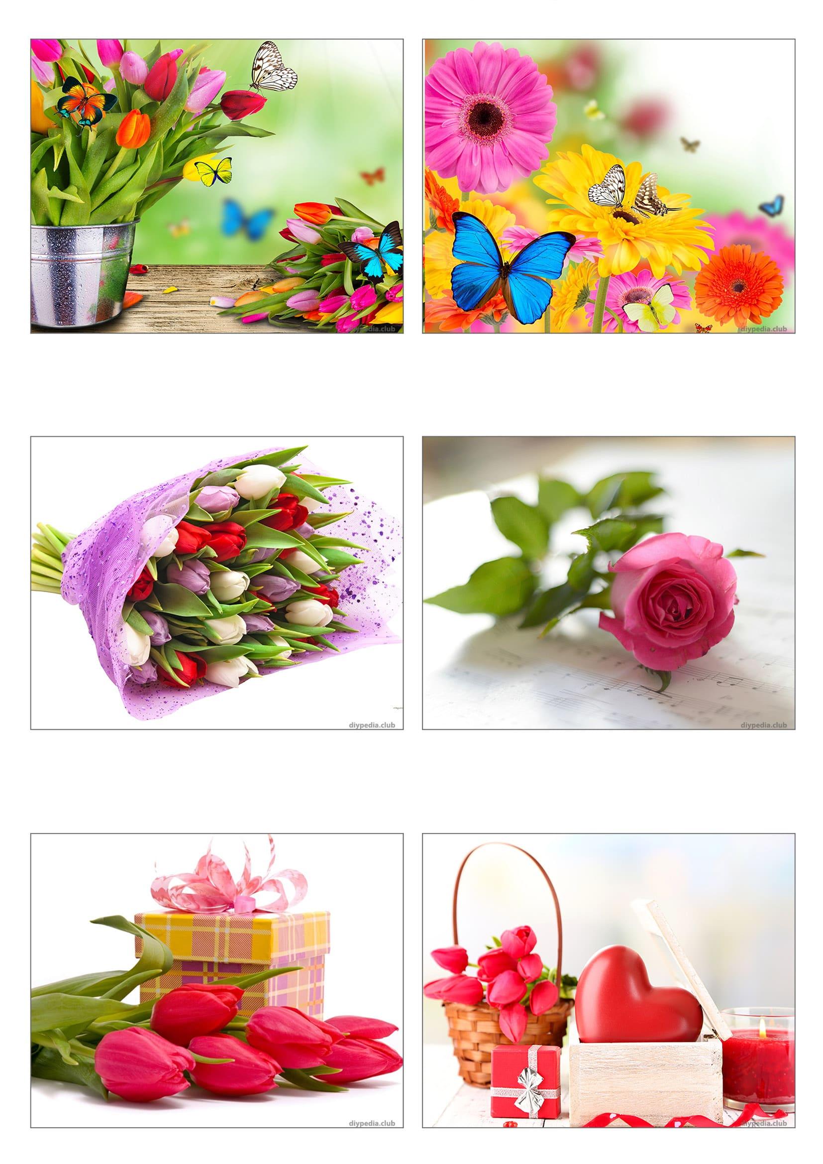 открытки с цветами без надписей