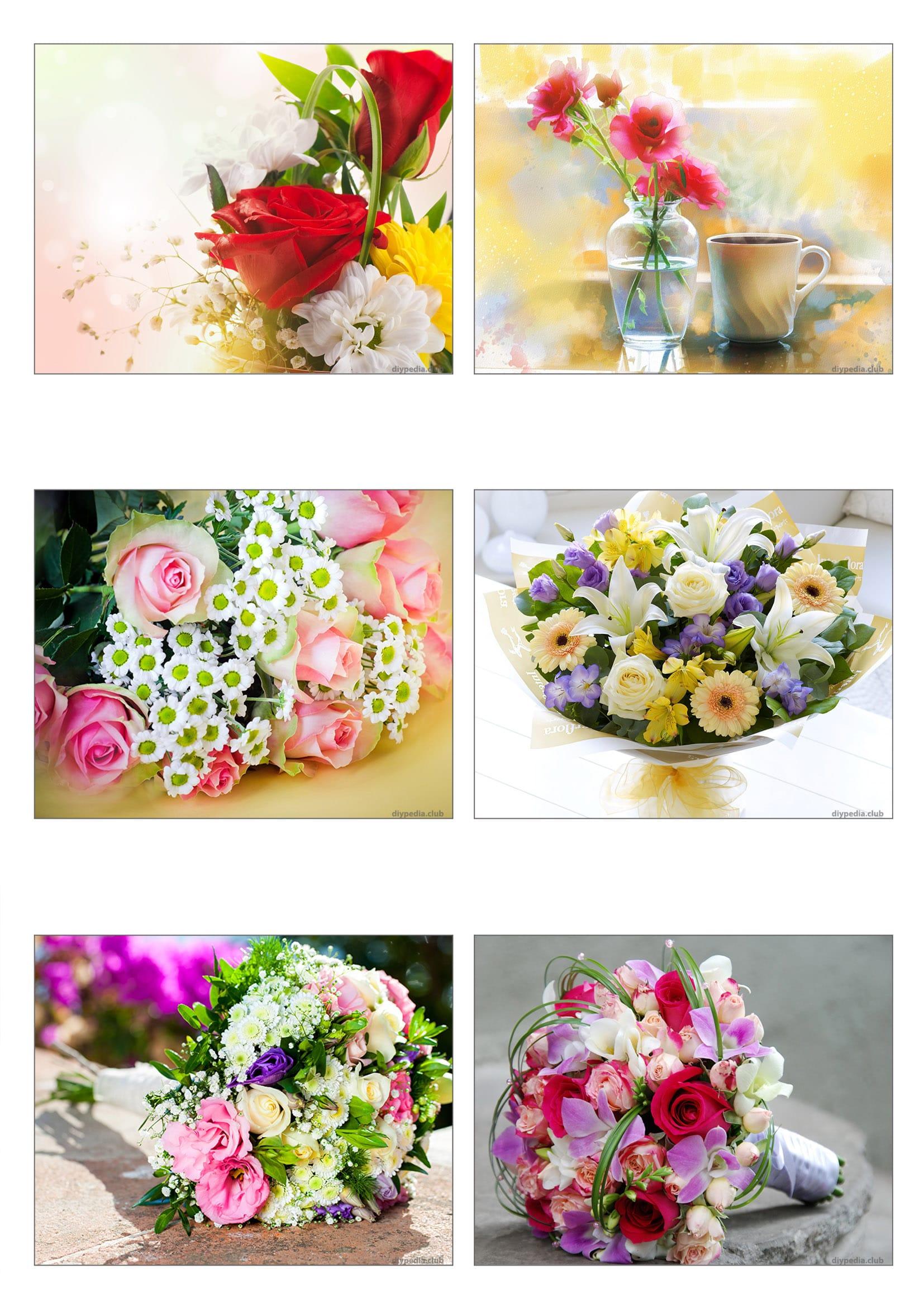 Красивые открытки с цветами без надписей